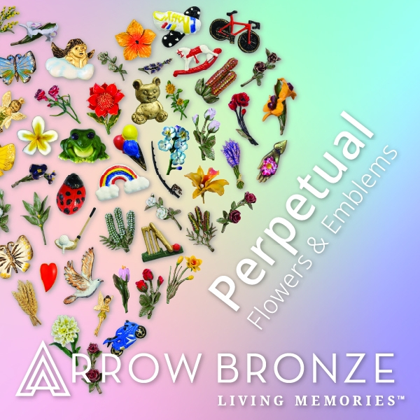 Arrow Bronze 3 - Perpetual